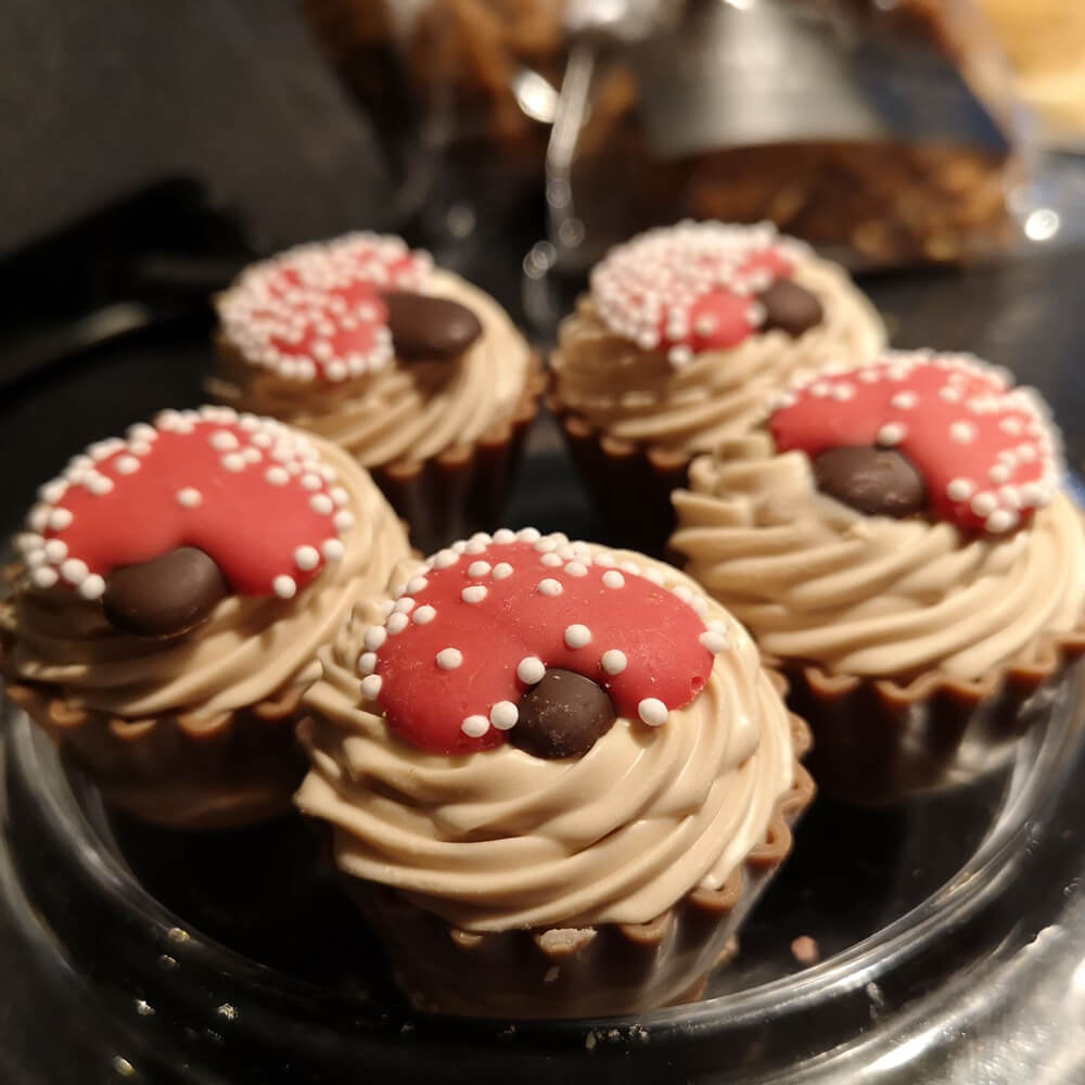 ons backhuys weeesp chocolade cupcakes